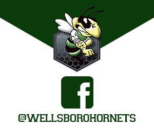 Follow Wellsboro Hornets on Facebook